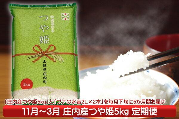 【ふるさと納税】庄内米定期便!つや姫5kgセット(11月下旬より配送開始 入金期限:H30.10.25)