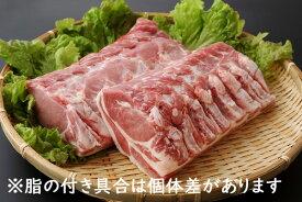 【ふるさと納税】山形県庄内SPF豚最上川ポークロースブロック4kg