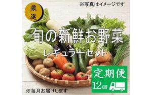 【ふるさと納税】No.1009 大人気!旬の新鮮お野菜 レギュラーセット(詰め合わせ)【定期便12回】