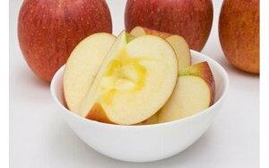 【ふるさと納税】No.1012 【贈答用】りんご サンふじ 3kg 蜜入り 林檎 リンゴ(秀〜特秀)