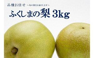 【ふるさと納税】No.1068 【先行受付】ふくしまの梨 3kg 品種お任せ ナシ なし