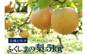 【ふるさと納税】No.1069 【先行受付】ふくしまの梨 5kg 品種お任せ ナシ なし