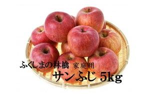 【ふるさと納税】No.1092 【家庭用】りんご サンふじ 5kg 林檎 リンゴ