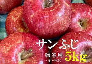 【ふるさと納税】No.1010 【2021年度産先行受付】りんご サンふじ 5kg 大玉 【贈答用】 林檎 リンゴ(秀〜特秀)