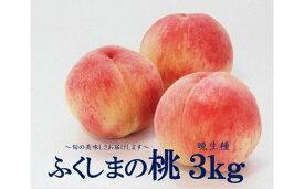 【ふるさと納税】No.1396 今年最後のふくしまの桃 3kg (晩生種)もも モモ