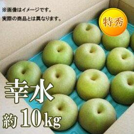 【ふるさと納税】【先行予約】No.0866なし「幸水」10kg(特秀28玉)