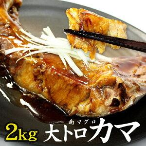 【ふるさと納税】南マグロ大トロカマ 2kg
