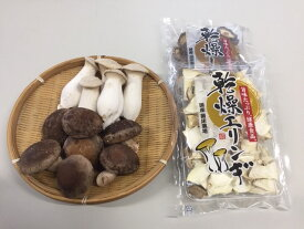 【ふるさと納税】小川きのこ園 生椎茸・エリンギセット