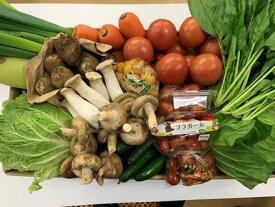 【ふるさと納税】いわき市産 旬の恵お野菜詰め合わせA