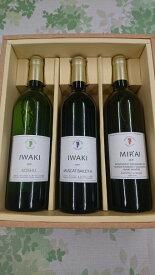 【ふるさと納税】いわきワイナリー ワイン3本セット