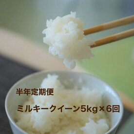 【ふるさと納税】AG-05K 会津喜多方ミルキークイーン5kg定期便(6ヶ月)