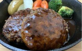 【ふるさと納税】【夏ギフト】川合精肉店 自家製ハンバーグ食べ比べセット TC0-29