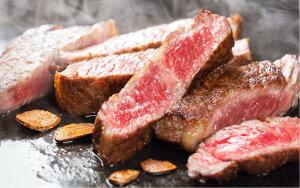 【ふるさと納税】川合精肉店黒毛和牛(福島牛)サーロインステーキ用500g TC0-9