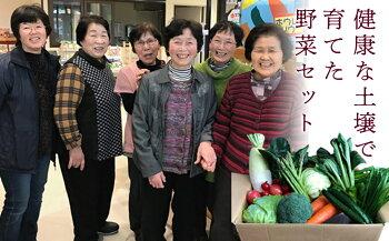 【ふるさと納税】西会津ミネラル野菜セット(大)