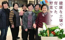 【ふるさと納税】西会津ミネラル野菜セット(小)