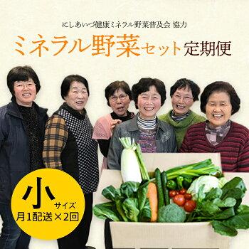定期便西会津ミネラル野菜セット月1配送×2回(小)