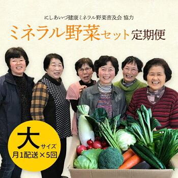 定期便西会津ミネラル野菜セット月1配送×5回(大)
