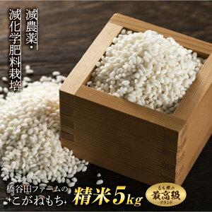 【ふるさと納税】《先行予約》令和2年産新米 減農薬・減化学肥料栽培 こがねもち 精米 5kg(もち米)