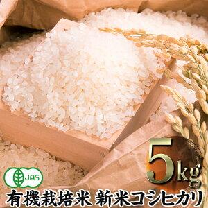 【ふるさと納税】令和2年産新米 JAS認定 有機栽培米 コシヒカリ 精米 5kg 新米予約