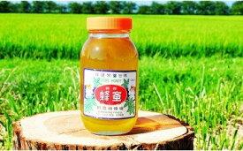 【ふるさと納税】6-A 折笠養蜂場 とちハチミツ 1200g