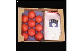 【ふるさと納税】15-N フローライシダ 会津薬師トマト2kg(8〜12ヶ入り)と会津薬師米(こしひかり)【白米】3kg 詰め合わせ
