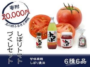 【ふるさと納税】 FT18-028 しぼりトマトづくしセット
