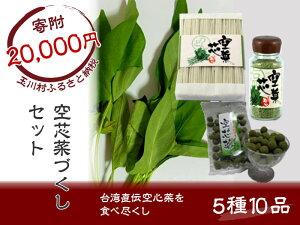 【ふるさと納税】 FT18-031 空芯菜づくしセット