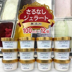 【ふるさと納税】FT18-099 福島県 玉川村産 無添加 さるなしジェラート 12個 100ml さとうとバニラと アイスクリーム ギフト