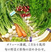 【ふるさと納税】季節の野菜や果物の詰め合わせ