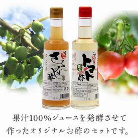 【ふるさと納税】 FT18-017 玉川村野菜のお酢セット