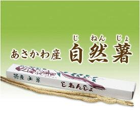 【ふるさと納税】自然薯 1キロ