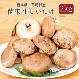【ふるさと納税】菌床しいたけ 葛尾村産2kgセット 送料無料