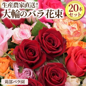 【ふるさと納税】AL01_生産農家直送!大輪のバラ花束 20本セット 贈答用/プレゼント/ギフト/薔薇/産地直送/父の日
