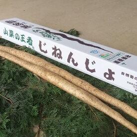 【ふるさと納税】AC01_自然薯(2本 1kg)とろろ/産地直送/野菜/ご飯のお供