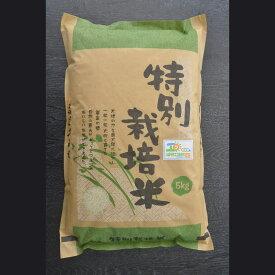 【ふるさと納税】AS04_古河市産特別栽培米コシヒカリ10kg【小久保農園】米/こしひかり/10kg