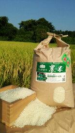 【ふるさと納税】AN01_古河市産コシヒカリ10kg【倉持農園】 こしひかり/米