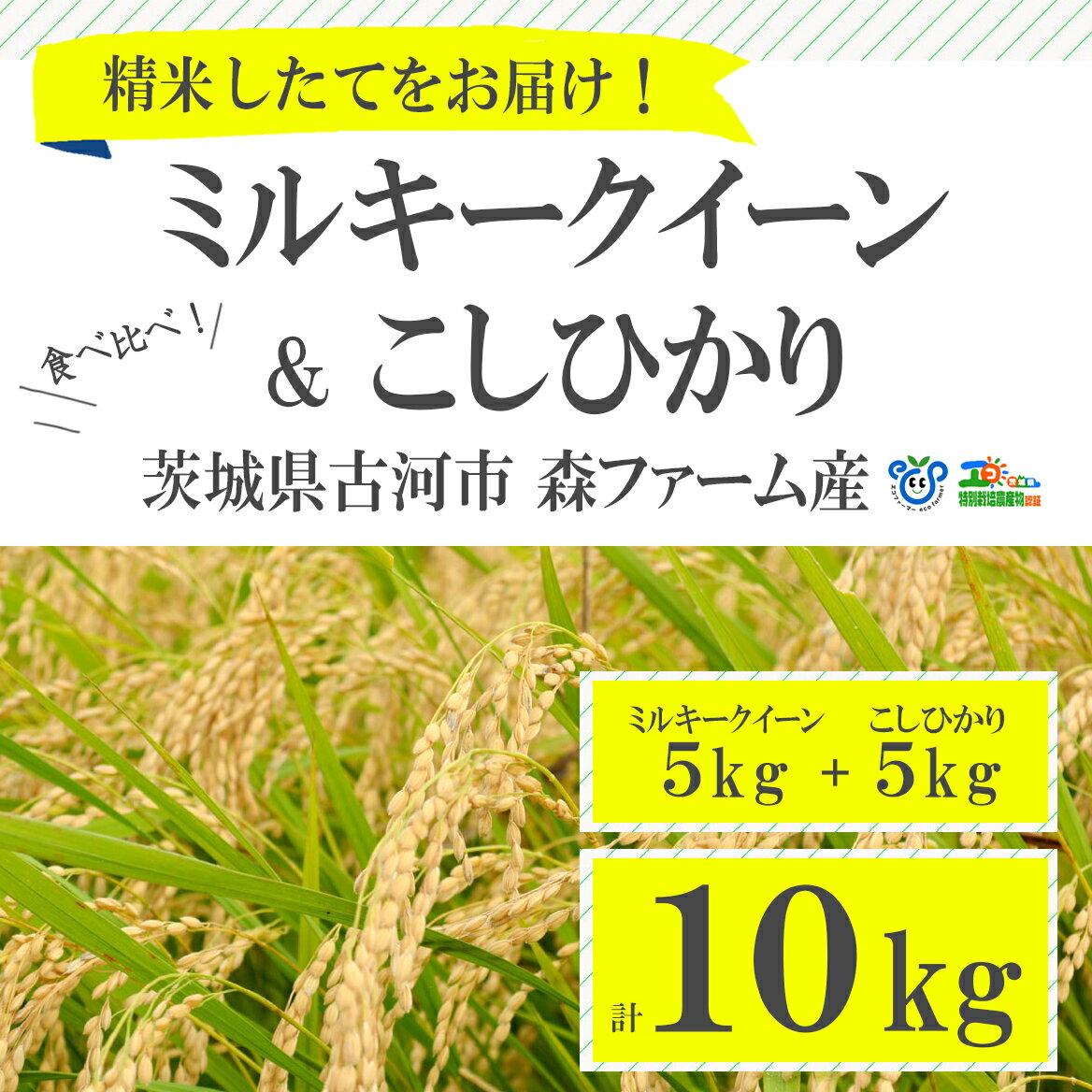 【ふるさと納税】BI01_食べ比べ!低農薬米こしひかりとミルキークイーン計10kg【お中元・お歳暮にも!】 米/コシヒカリ/ギフト/セット商品/