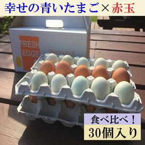 【ふるさと納税】AG07_江原ファーム 地養卵&アローカナハーフセット(計30個)たまご/タマゴ/生みたて/新鮮/
