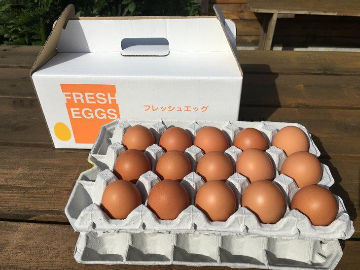 【ふるさと納税】AG03_江原ファーム 体に優しい地養卵(30個)
