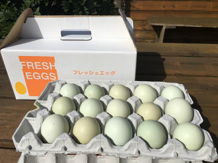 【ふるさと納税】AG01_江原ファーム アローカナの青い卵(30個) たまご/タマゴ/生みたて/新鮮/