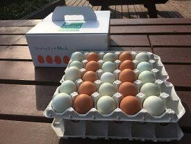 【ふるさと納税】AG08_江原ファーム 地養卵&アローカナハーフセット(計50個)たまご/タマゴ/生みたて/新鮮/ ◆