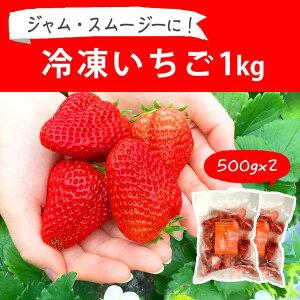 【ふるさと納税】BI08_摘みたて!便利な小分け!冷凍いちご1kg(500g×2)