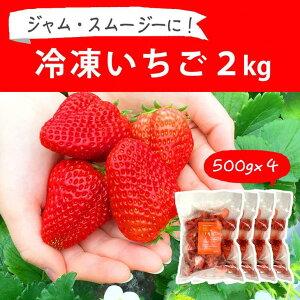 【ふるさと納税】BI09_摘みたて!便利な小分け!冷凍いちご2kg(500g×4)