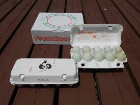 【ふるさと納税】AG10_江原ファーム アローカナの青い卵(計20個)