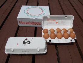 【ふるさと納税】AG11_江原ファーム 体に優しい地養卵(計20個)