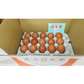 【ふるさと納税】押木養鶏場の「紅孔雀」大人気!たまごかけご飯セット【1206872】