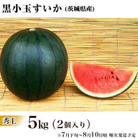 【ふるさと納税】12-9茨城県産黒小玉すいか【秀L】5kg(2個)