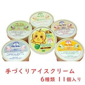 【ふるさと納税】18-8 手づくりアイスクリーム 11個(6種)