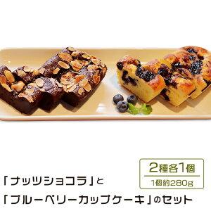 【ふるさと納税】48-5 「ナッツショコラ」と「ブルーベリーカップケーキ」のセット(280g×2種)