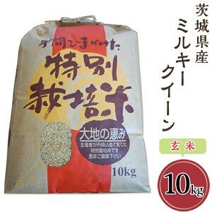 【ふるさと納税】58-3茨城県産ミルキークイーン(玄米)10kg